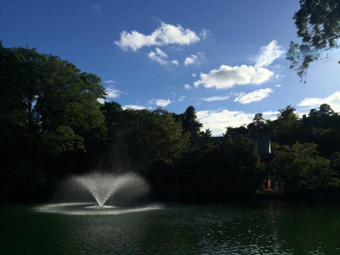 Inokashira Park, TIU, JSP, Japan Studies Program